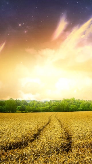 iPhone 5s iPhone SE,5s wallpaper 2147