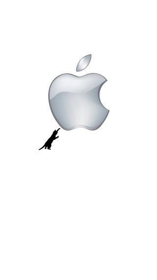 iPhone SE,5s 壁紙 2217