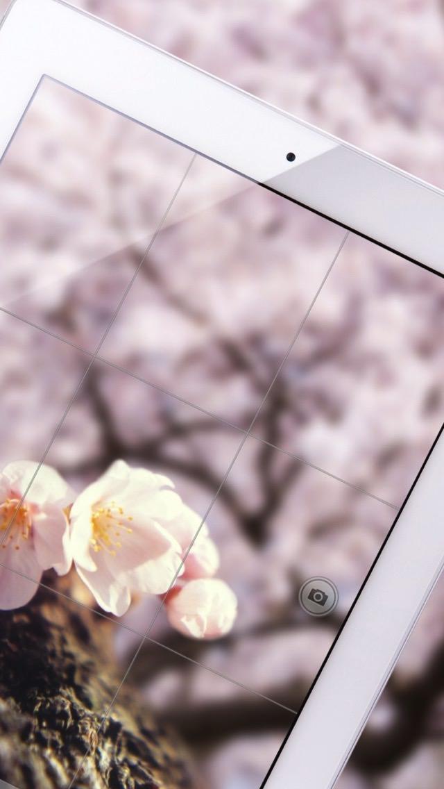 iPhone SE,5s 壁紙 wallpaper 1356